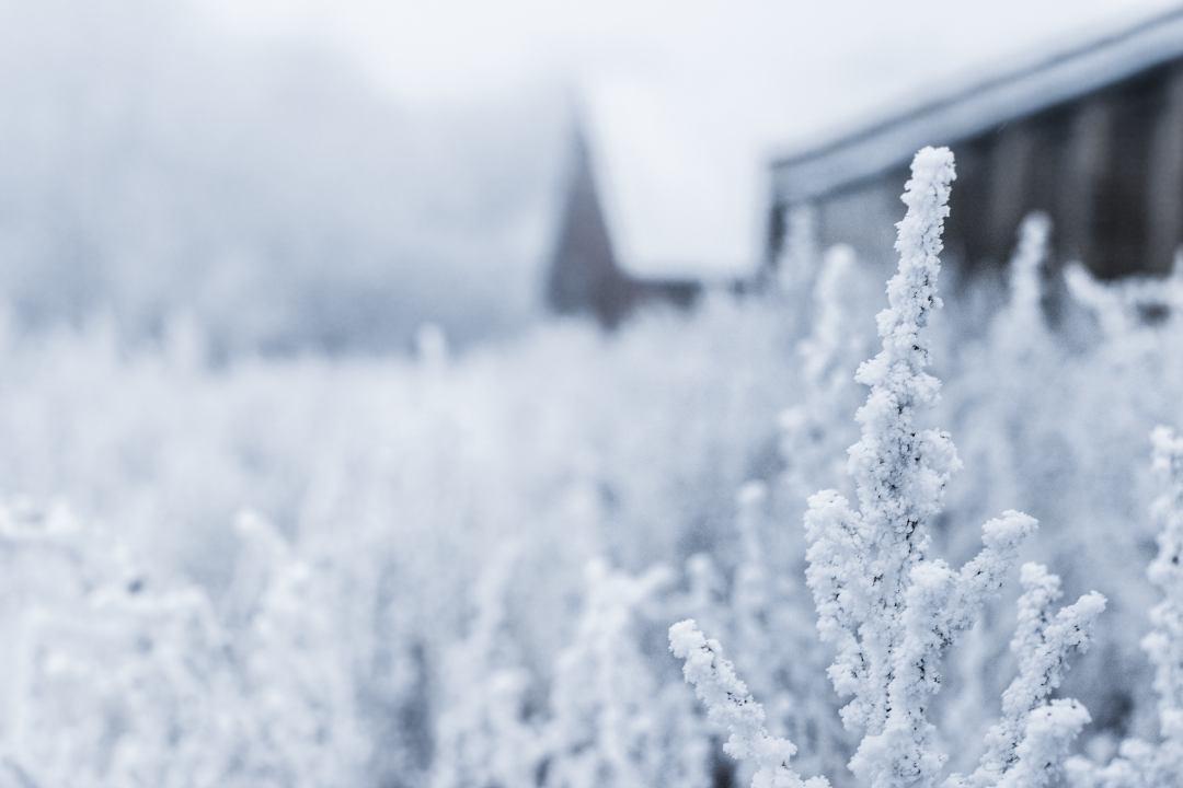 Zaštita od velikih hladnoća – preporuka za javnost